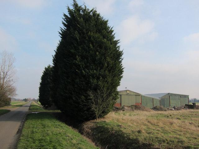 Cottenham Long Drove