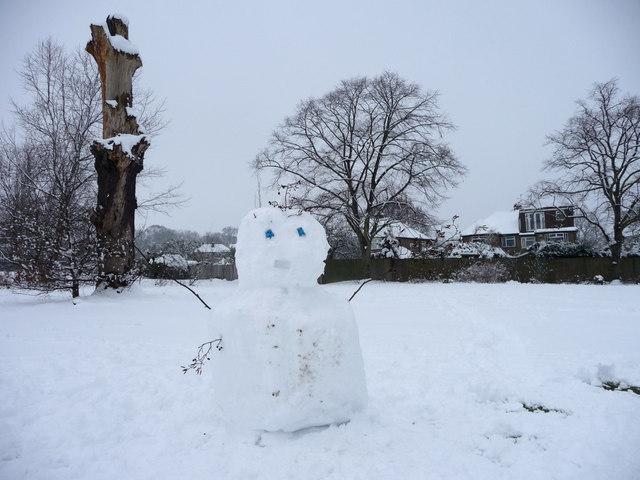 Snowman with Dead Tree, Oakwood Park, London N14