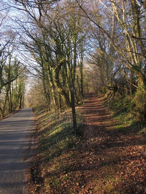 Road and path near Haydon Farm