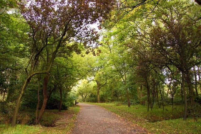 Footpath in Stanley Park