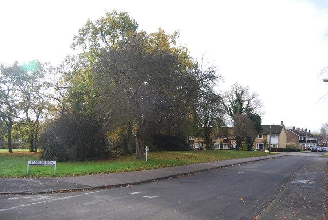An open area, Wakehurst Drive