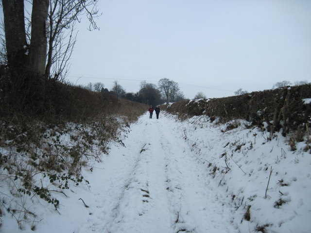 Crook  Lane,  a  Track  to  Fields