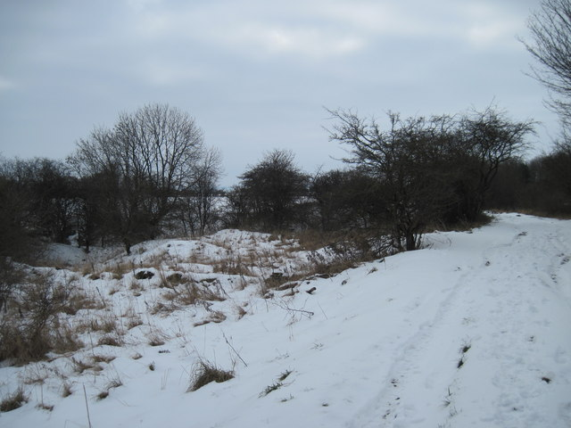 Disused  Pit  Middleton  Heights