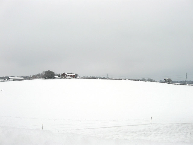 Marl's Meadow