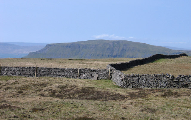 Wall junction on Fountains Fell