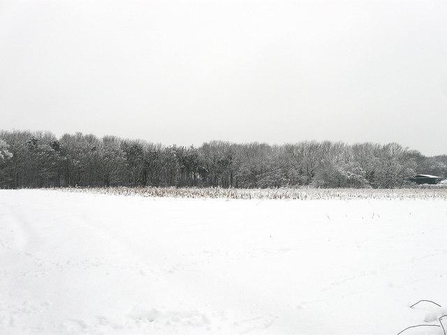 Hawkes Field