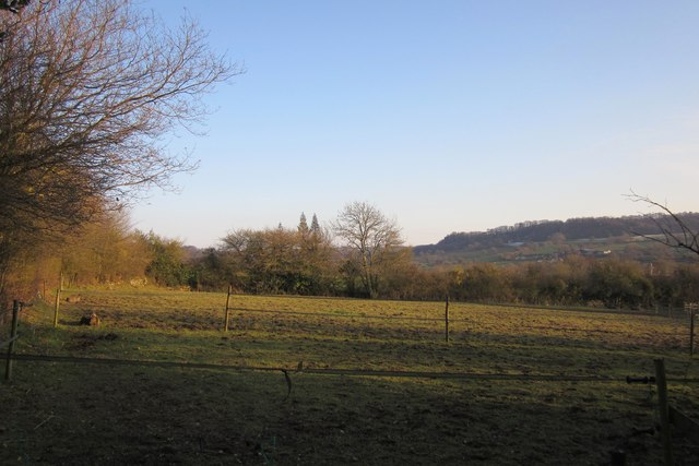 Pasture near Leigh Court