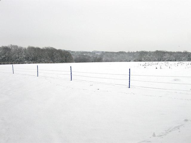 Hale Field/Hale Upper Field (2)