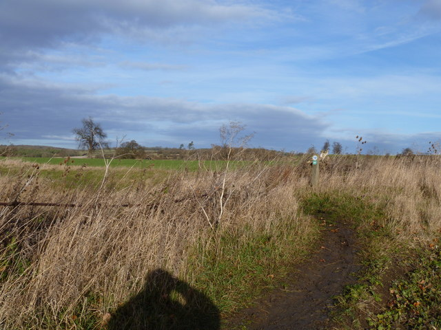 Turn in the bridleway
