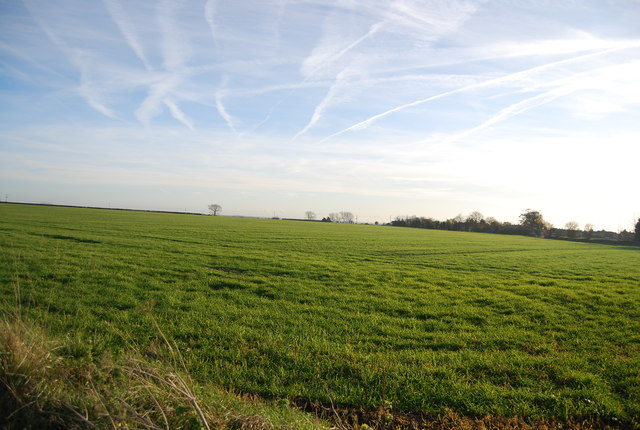 Vapour trails above farmland, Old Tree Rd