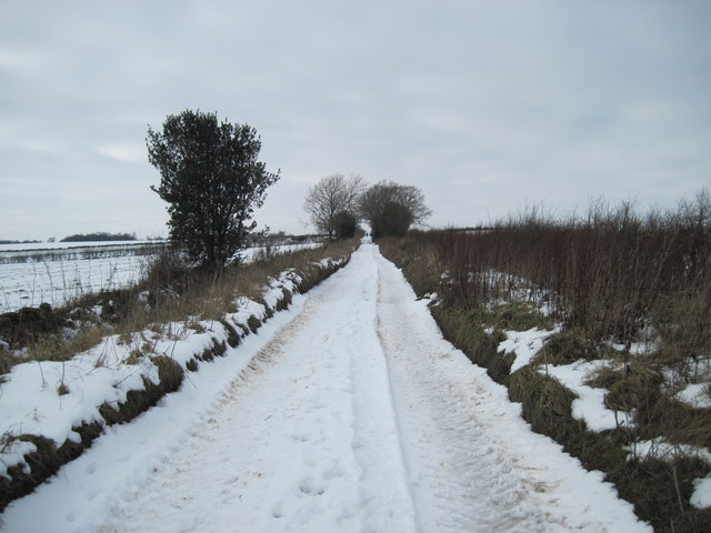 Peat  Road  (Track)