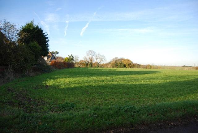 Farmland by One Tree Rd