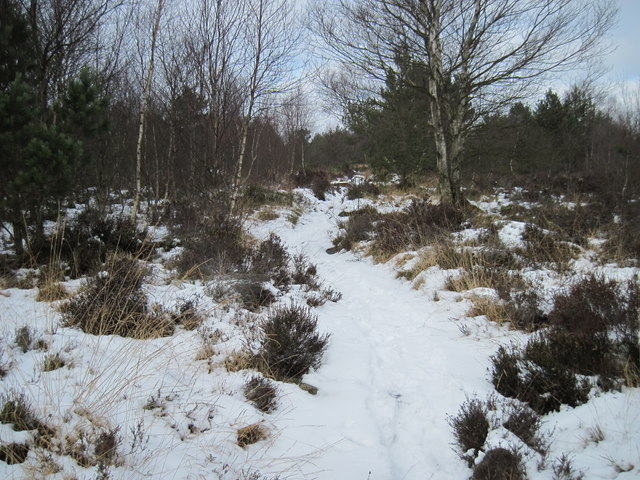 Path  over  Stony  Moor