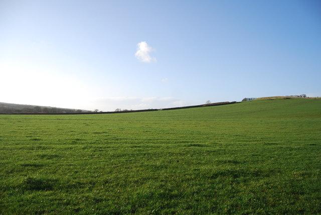 Farmland, Litton Cheney