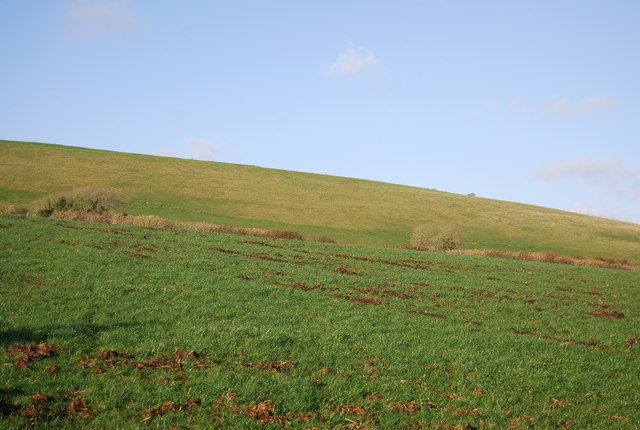 Farmland west of Litton Cheney