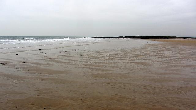Beach, Shell Bay
