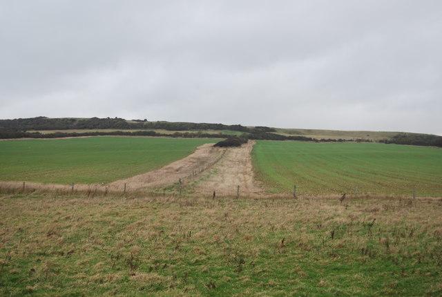 Fence fields and farmland
