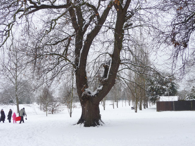 Fun in the Snow, Oakwood Park, London N14