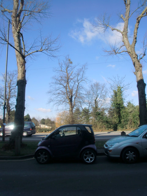 Bramley Road, Oakwood