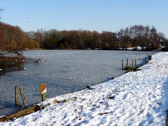 Boxer's Lake, Enfield