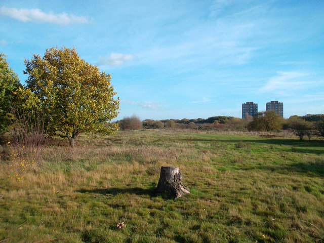 On Hounslow Heath