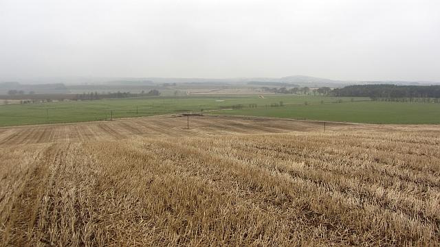 Scuddie Hill