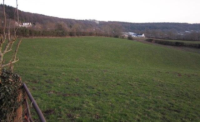Pasture, Blackborough