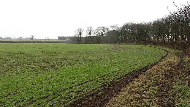 Field, Balcaskie