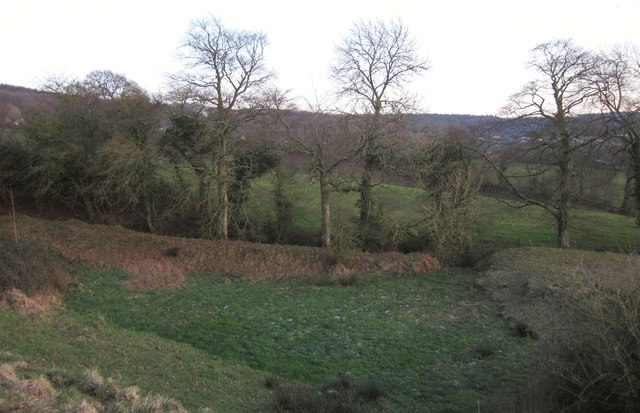 Meadow near Blackborough