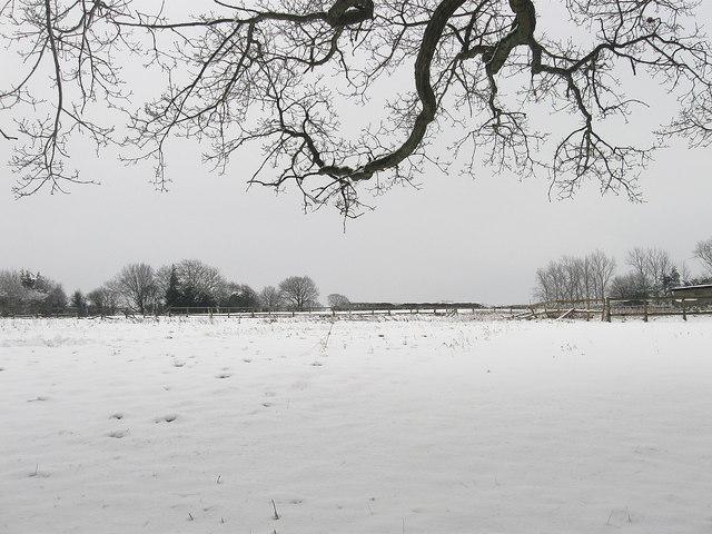 Fowles Field