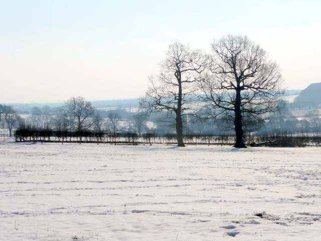 Farmland, The Ridgeway, Enfield