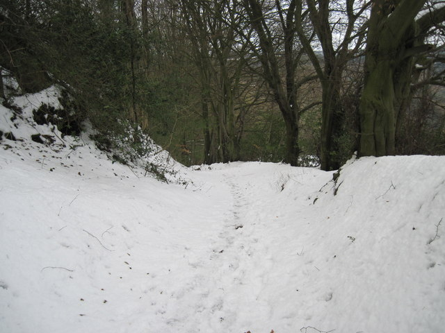 Path  from  Newton  on  Rawcliffe  to  Raygate  Slack