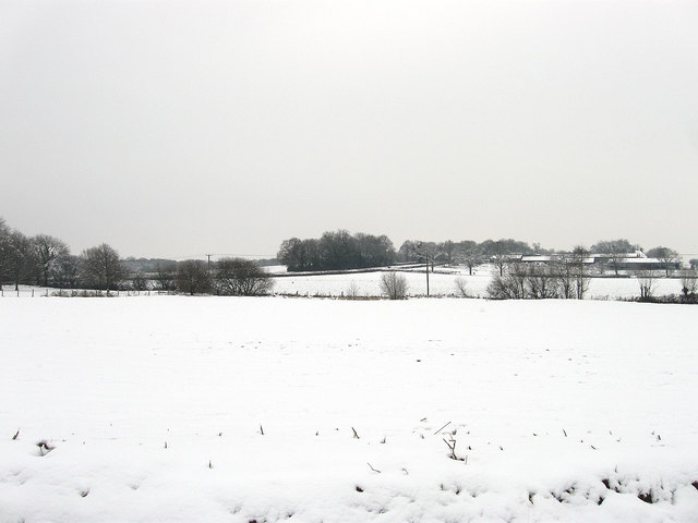 The Jubilee Field