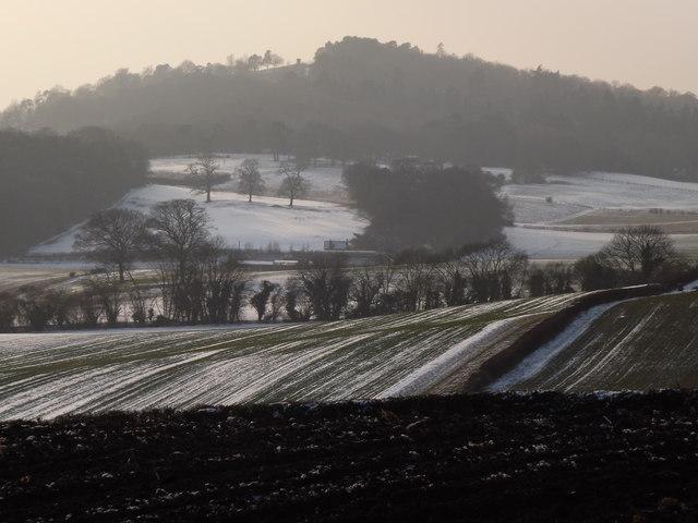Fields Around Newbarn