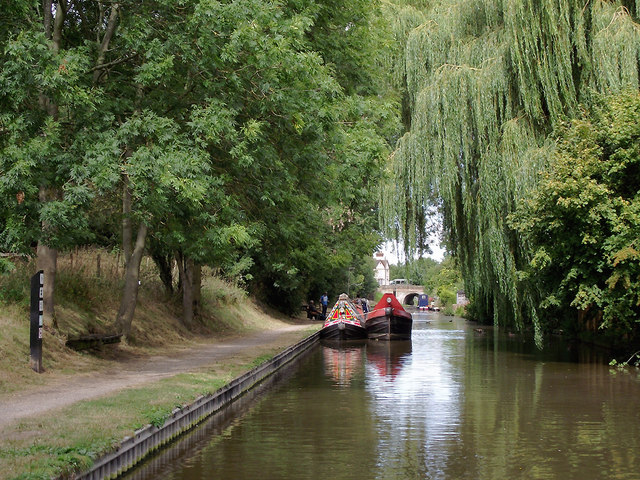Trees across the canal at Gnosall Heath, Staffordshire
