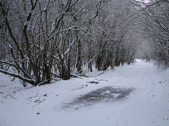 Byway, Well Ground Copse
