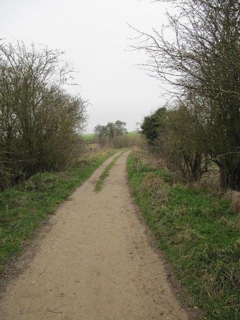 Towards East Ilsley