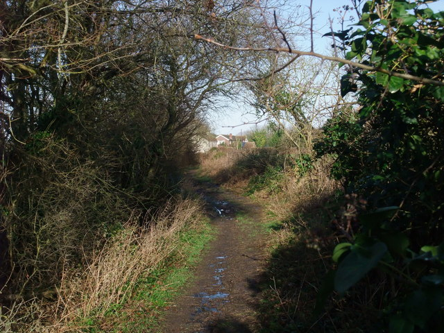 The Avon Valley Path approaching Winkton