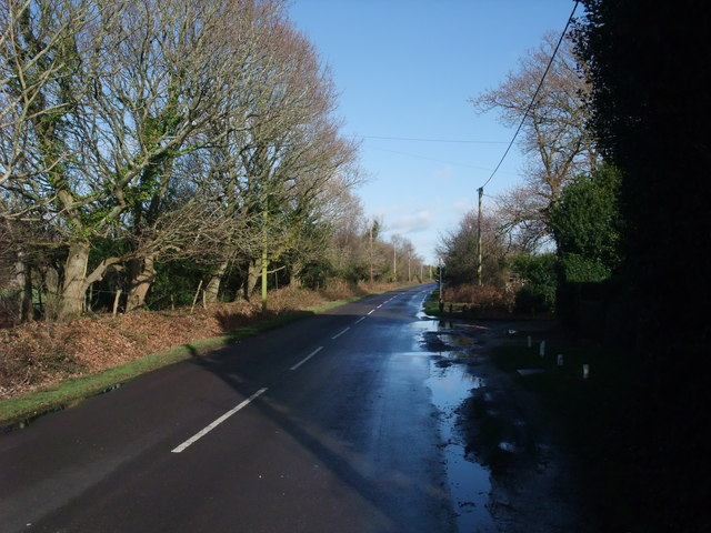 Burley Road at Thorney Hill