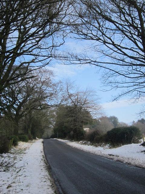 Lickey - Beacon Lane In Winter