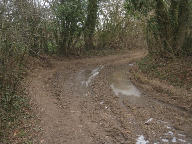 No mud today
