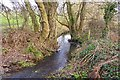 SZ2694 : Stream at Lower Ashley by Mike Smith