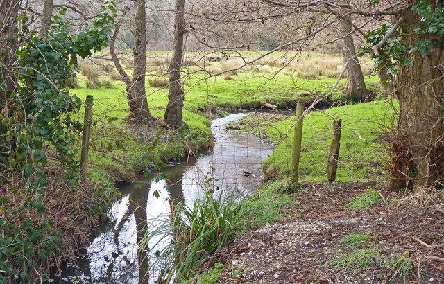 Stream at Lower Ashley