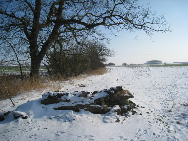 The beginning of the bridleway to Moor Road