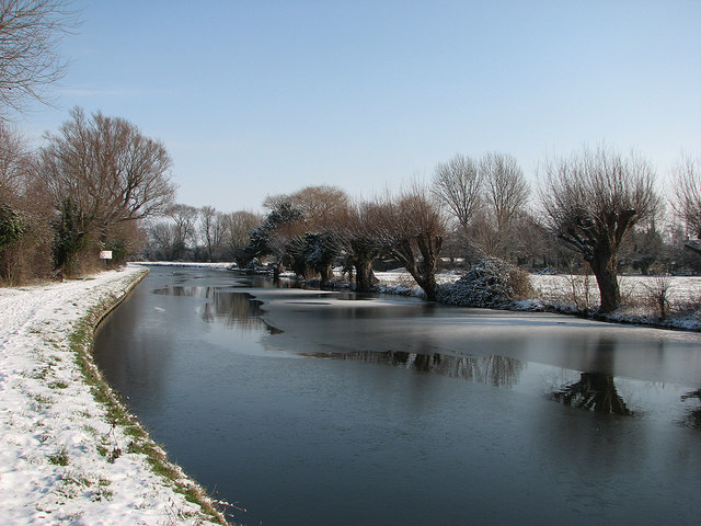 Snow, ice and pollarded willows
