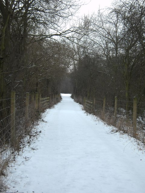 Fairburn Cut Lane
