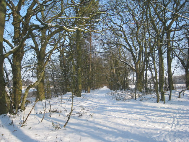 Track from Sands Plantation to the A46