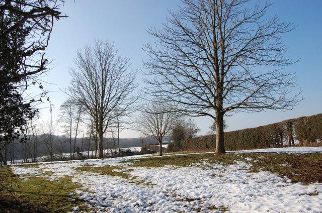 Field and Trees off Slip Mill Road, near Hawkhurst