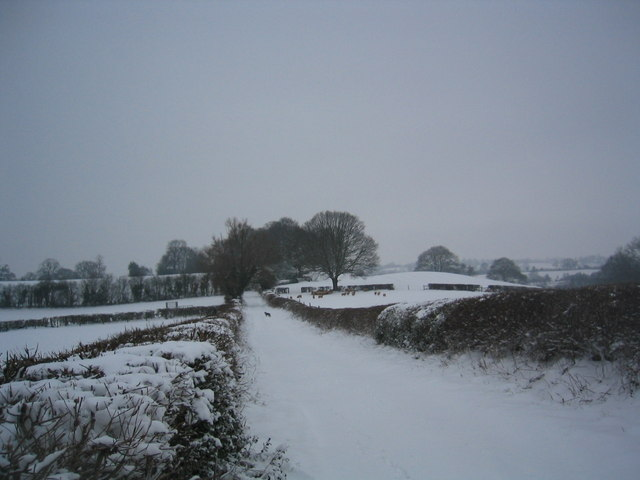 Snow on a green lane in Coreley