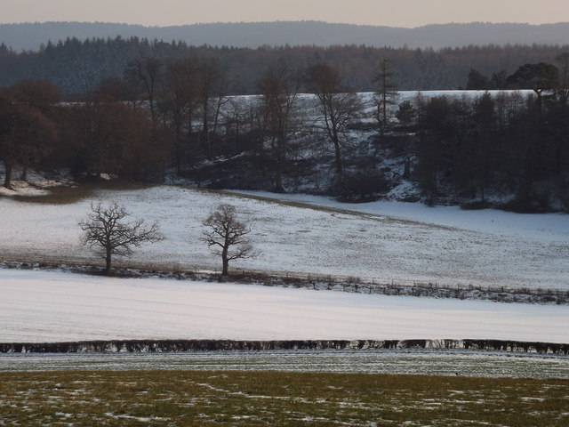 Winter by Water Lane